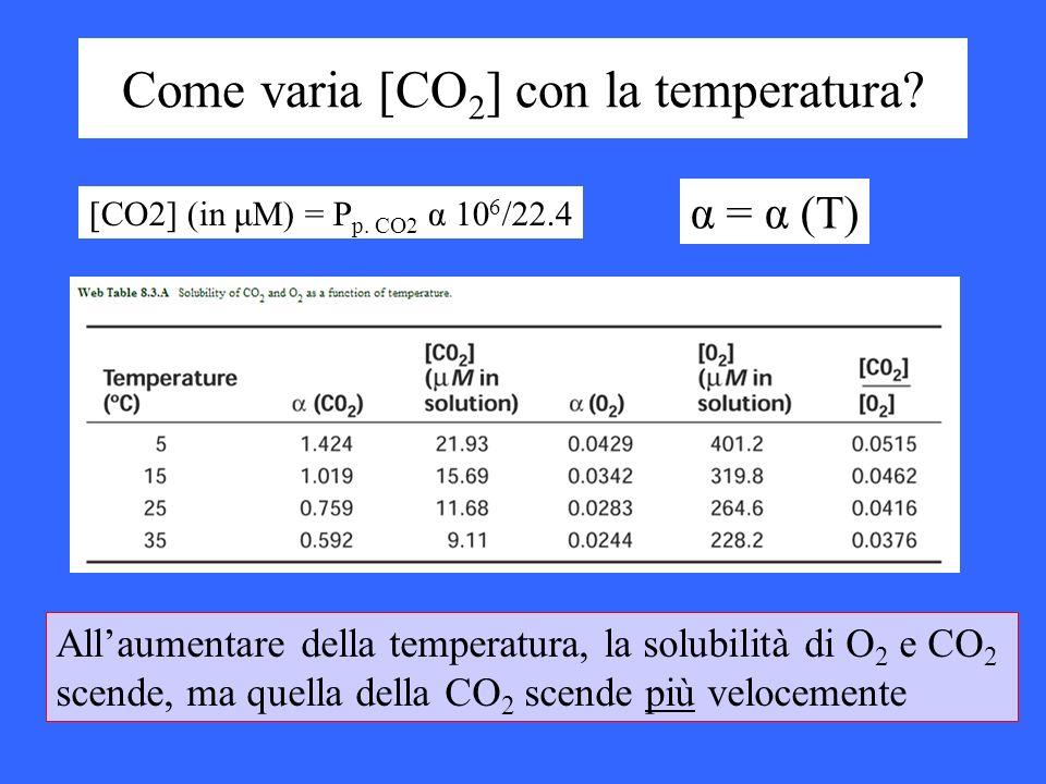 Come varia [CO2] con la temperatura